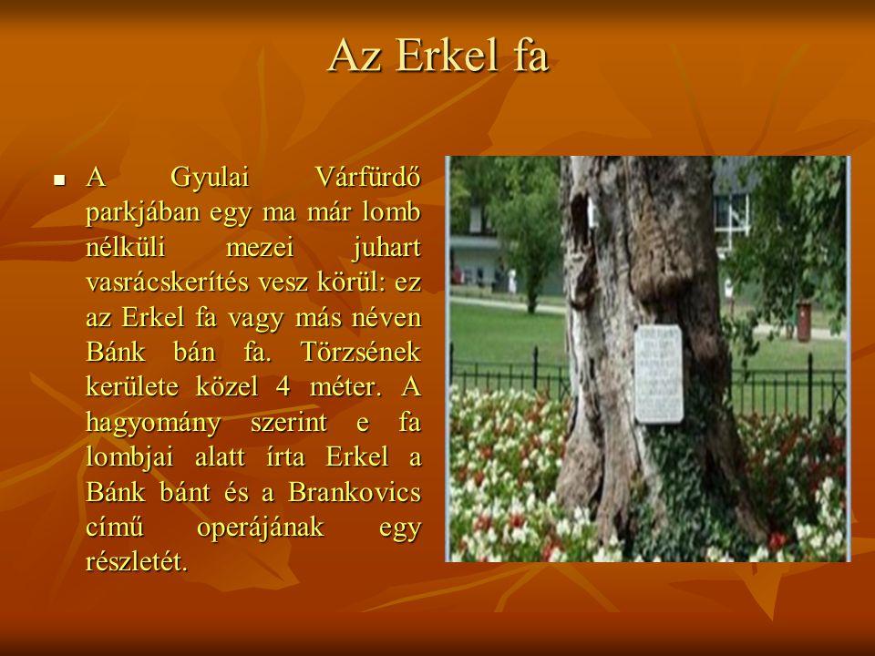 Az Erkel fa  A Gyulai Várfürdő parkjában egy ma már lomb nélküli mezei juhart vasrácskerítés vesz körül: ez az Erkel fa vagy más néven Bánk bán fa. T