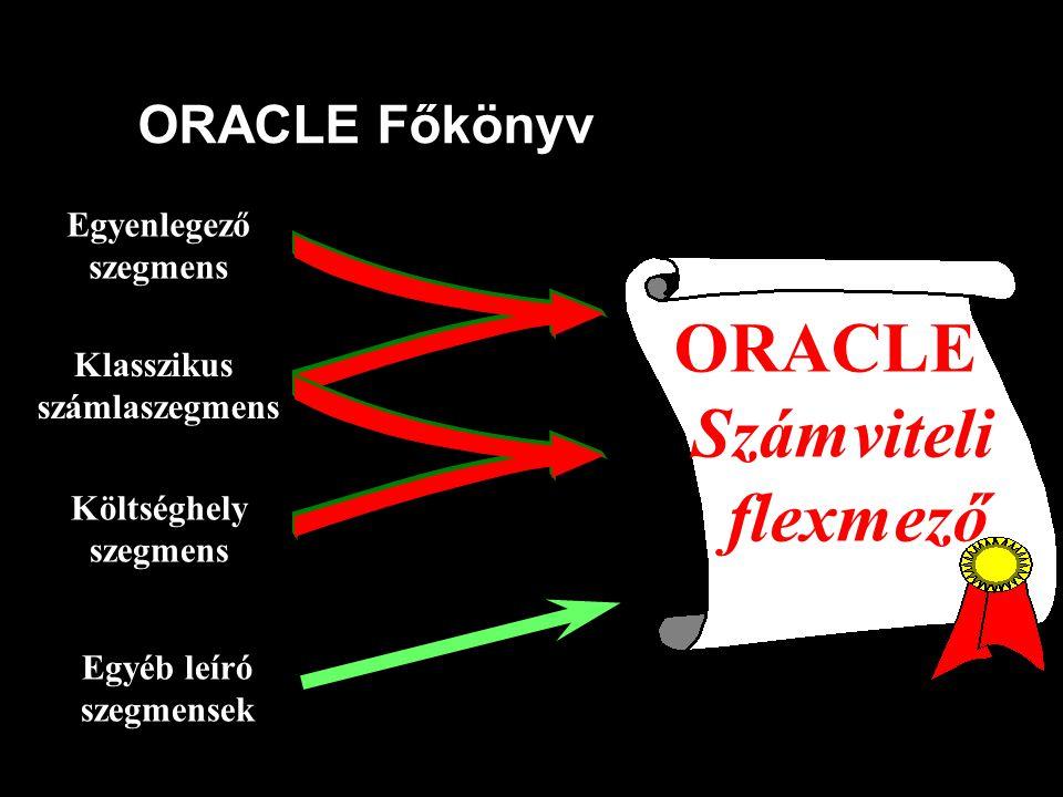 ORACLE Főkönyv Klasszikus számlaszegmens Költséghely szegmens Egyenlegező szegmens Egyéb leíró szegmensek ORACLE Számviteli flexmező