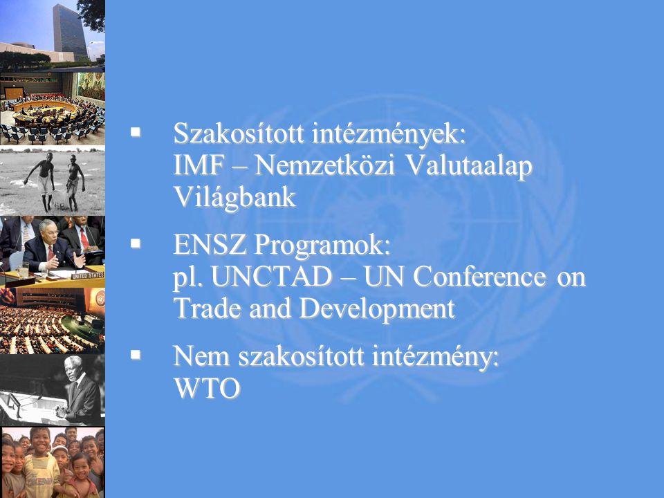  Szakosított intézmények: IMF – Nemzetközi Valutaalap Világbank  ENSZ Programok: pl. UNCTAD – UN Conference on Trade and Development  Nem szakosíto
