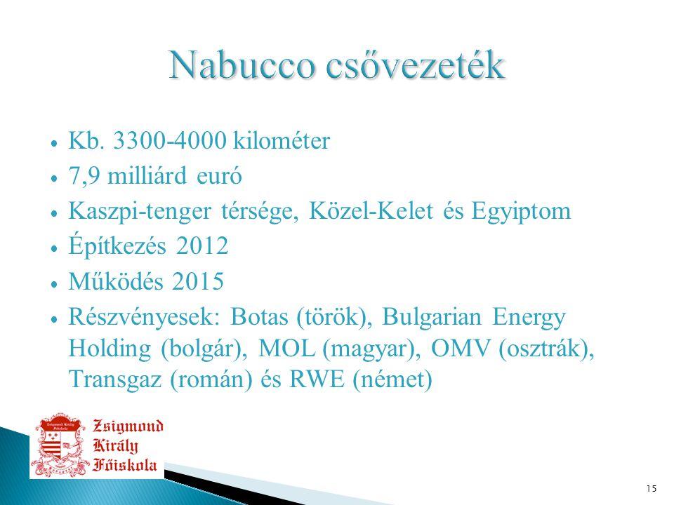 15 ∙ Kb. 3300-4000 kilométer ∙ 7,9 milliárd euró ∙ Kaszpi-tenger térsége, Közel-Kelet és Egyiptom ∙ Építkezés 2012 ∙ Működés 2015 ∙ Részvényesek: Bota