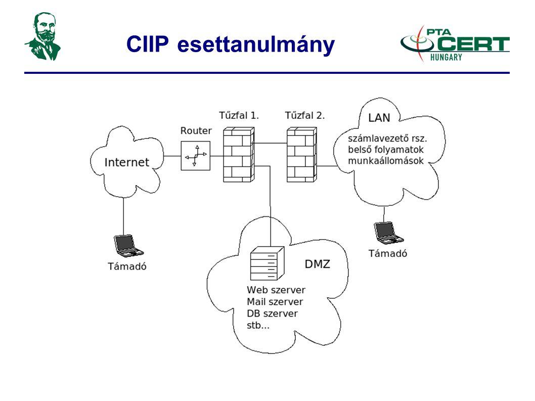 CIIP esettanulmány