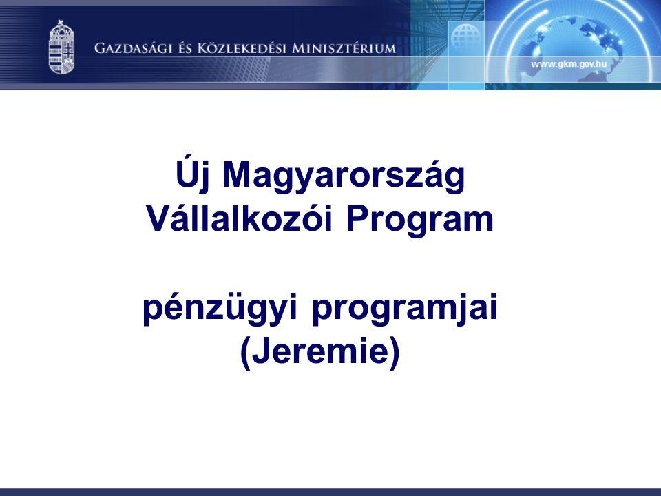 JEREMIE kezdeményezés (Joint European Resources for Micro to Medium Enterprises) Európai Bizottság Regionális Igazgatósága által az Európai Bizottság más területeivel, valamint az EIB Csoporttal (Európai Beruházási Bank (EIB) + Európai Beruházási Alap (EIF) való együttműködésben kidolgozott szempontrendszer.