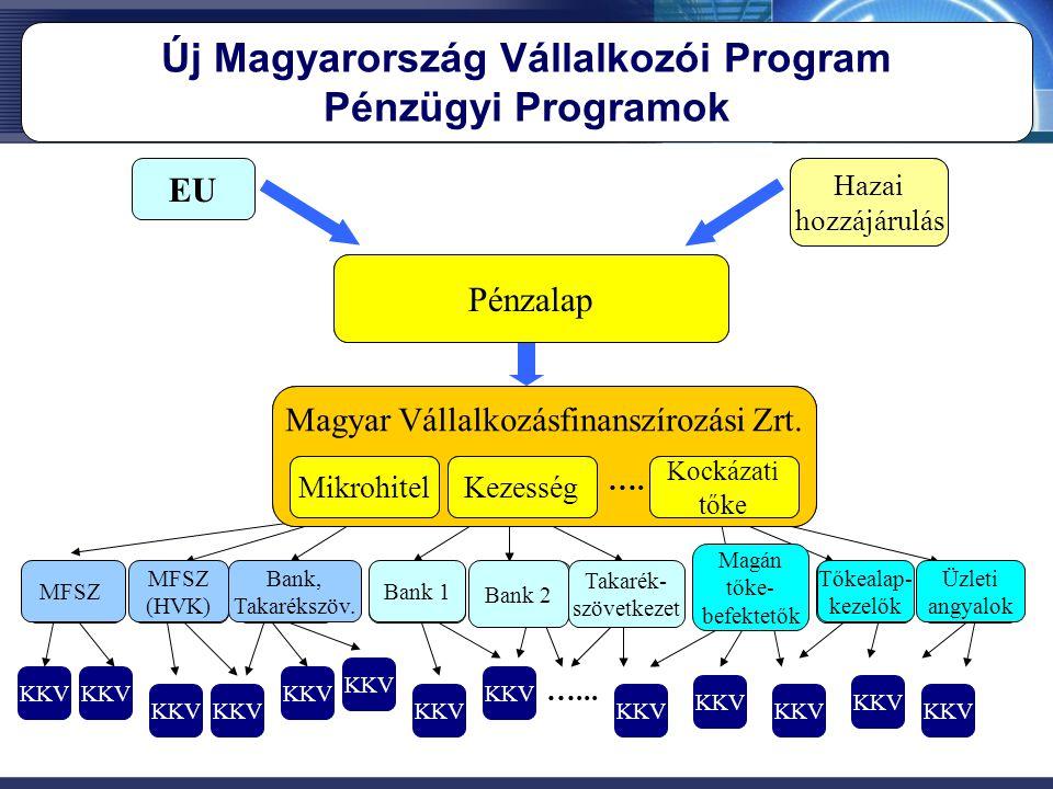 """JEREMIE Alap EU Tagállami hozzájárulás HOLDINGALAP KEZELŐ Pénzügyi program I. Pénzügyi program II. Pénzügyi Program """"n"""" …. Pü. Közv. 1. Pü. Közv. 2. P"""