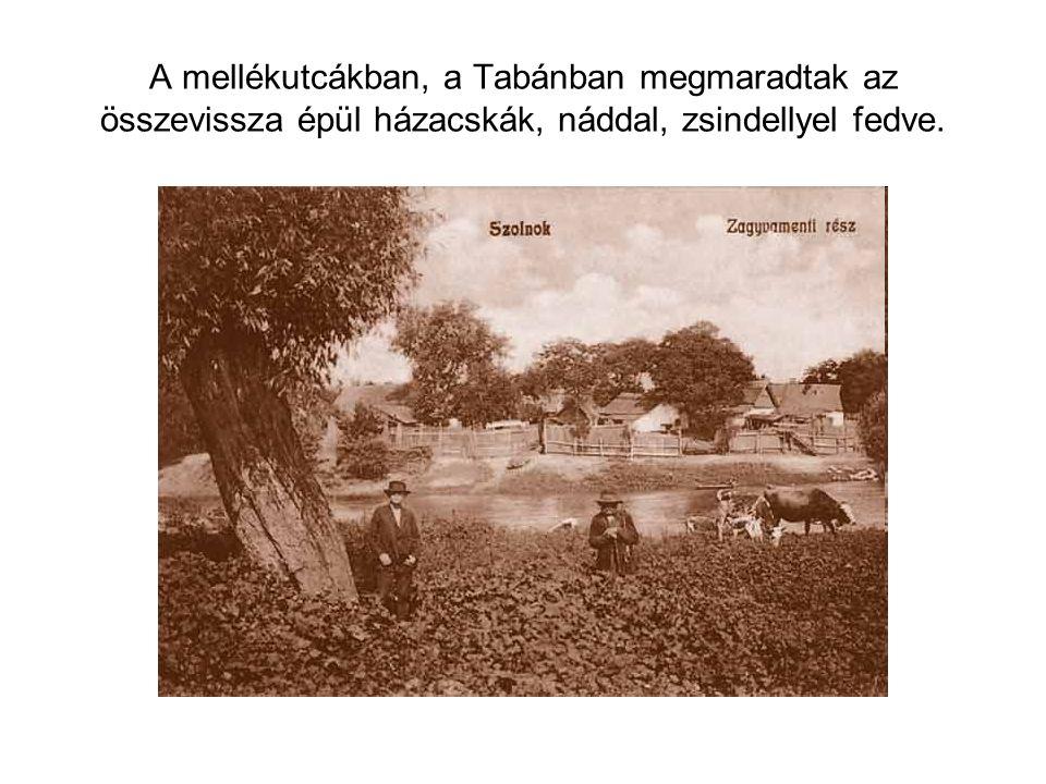 A mellékutcákban, a Tabánban megmaradtak az összevissza épül házacskák, náddal, zsindellyel fedve.