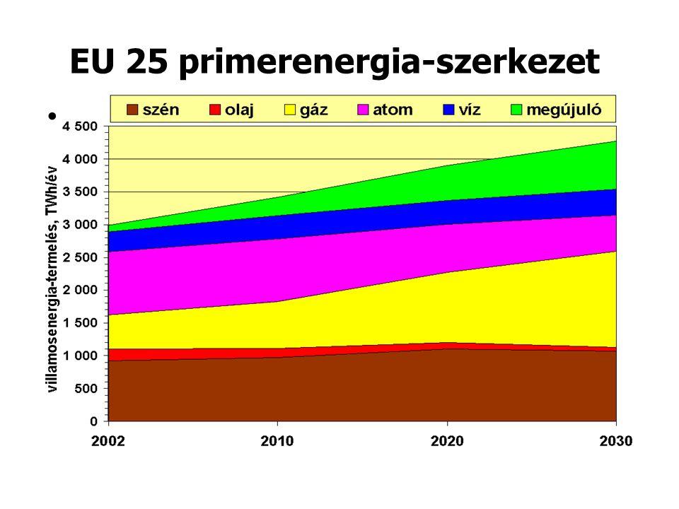 EU 25 primerenergia-szerkezet •