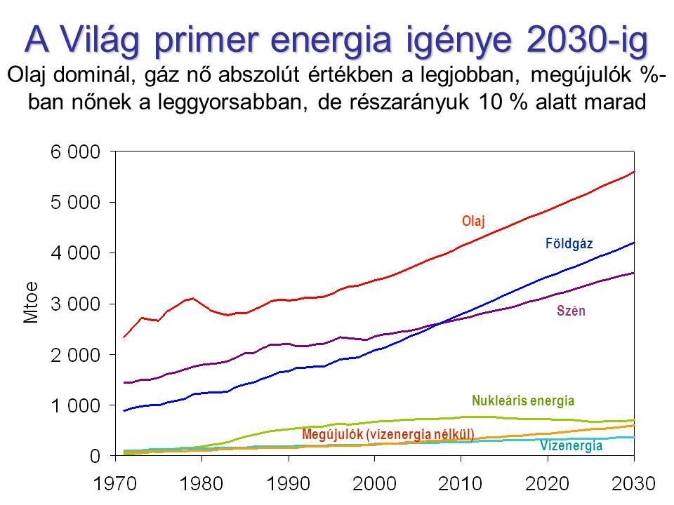 A Világ primer energia igénye 2030-ig A Világ primer energia igénye 2030-ig Olaj dominál, gáz nő abszolút értékben a legjobban, megújulók %- ban nőnek a leggyorsabban, de részarányuk 10 % alatt marad Olaj Földgáz Szén Nukleáris energia Megújulók (vízenergia nélkül) Vízenergia
