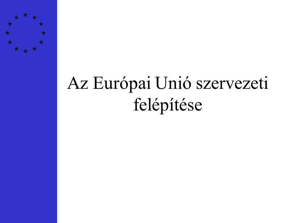 Döntéshozatali szervek •Európai Bizottság •Európai Unió Tanácsa •Európai Parlament •Európai Bíróság •Számvevőszék
