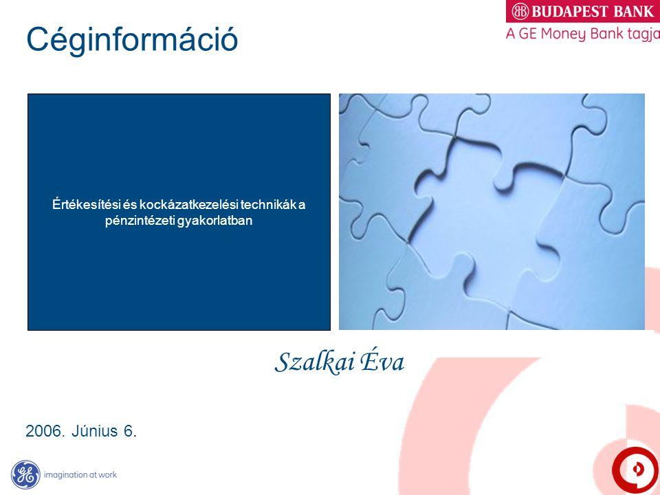 Céginformáció 2006. Június 6. Értékesítési és kockázatkezelési technikák a pénzintézeti gyakorlatban Szalkai Éva