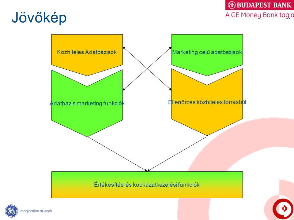 Jövőkép Közhiteles Adatbázisok Adatbázis marketing funkciók Marketing célú adatbázisok Ellenőrzés közhiteles forrásból Értékesítési és kockázatkezelés