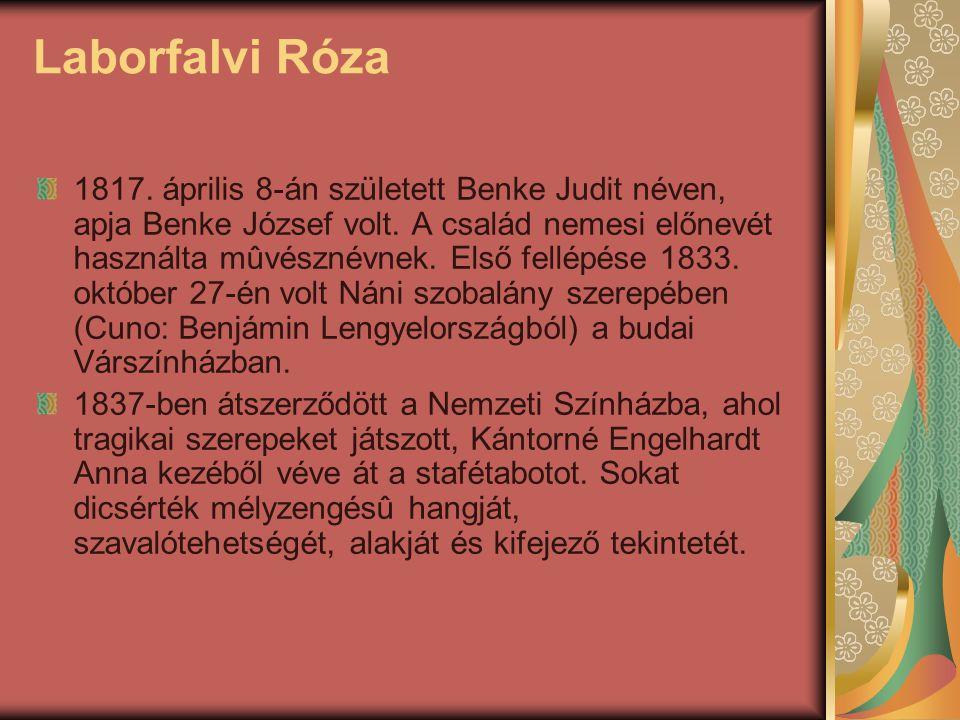 Laborfalvi Róza 1817. április 8-án született Benke Judit néven, apja Benke József volt. A család nemesi előnevét használta mûvésznévnek. Első fellépés