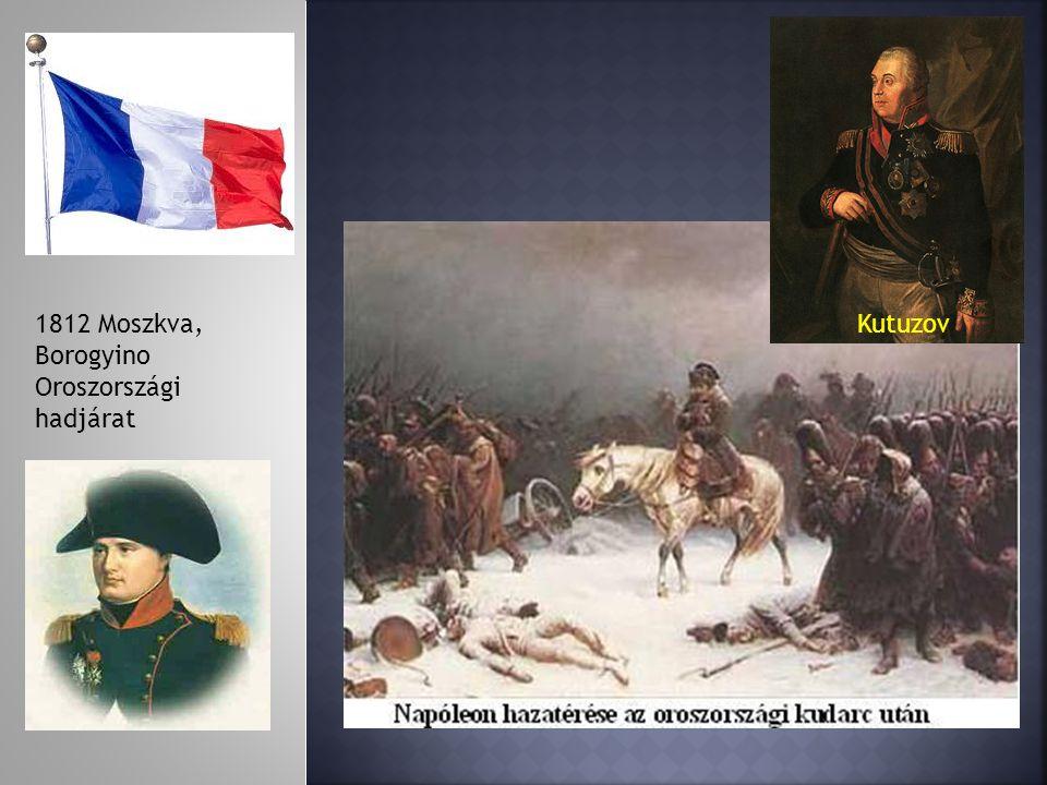 1812 Moszkva, Borogyino Oroszországi hadjárat Kutuzov