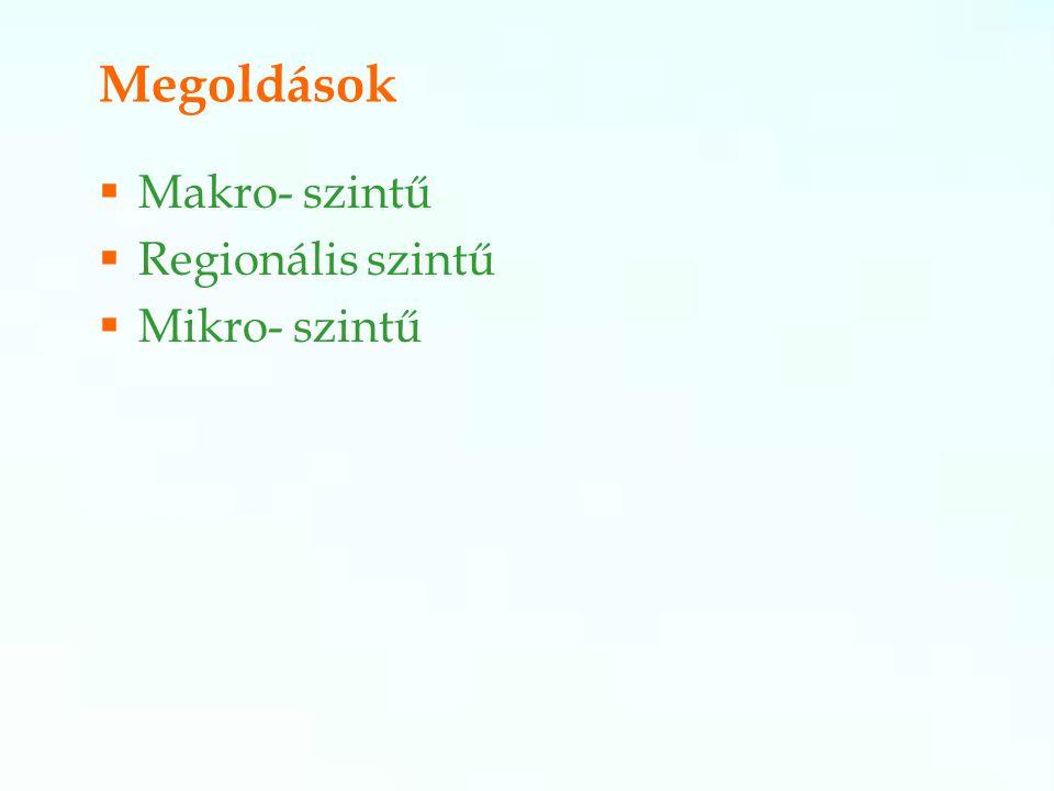Megoldások  Makro- szintű  Regionális szintű  Mikro- szintű