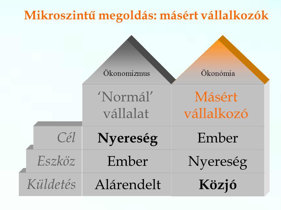 Küldetés Alárendelt Eszköz Ember Mikroszintű megoldás: másért vállalkozók Cél Nyereség 'Normál' vállalat Közjó Nyereség Ember Másért vállalkozó ÖkonomizmusÖkonómia