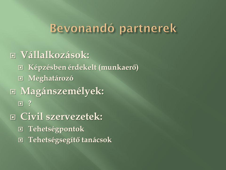  Vállalkozások:  Képzésben érdekelt (munkaerő)  Meghatározó  Magánszemélyek:  .