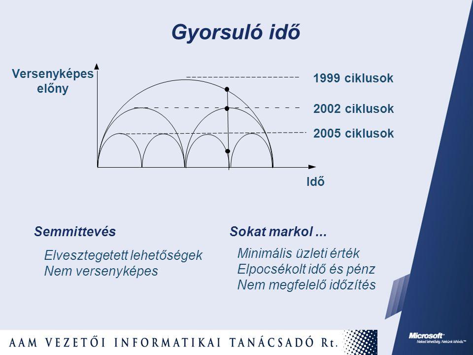 Versenyképes előny Idő 2002 ciklusok 2005 ciklusok 1999 ciklusok Semmittevés Elvesztegetett lehetőségek Nem versenyképes Sokat markol... Minimális üzl