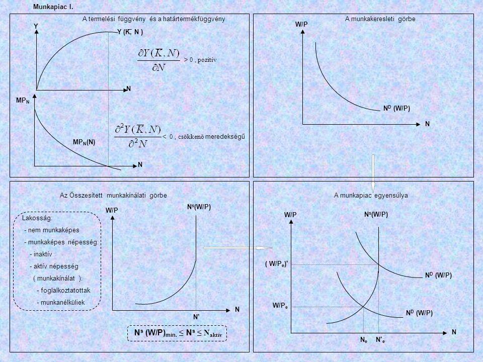 Y MP N Y (K, N ) N N MP N (N) A termelési függvény és a határtermékfüggvény > 0, pozitív < 0, csökkenő meredekségű W/P N D (W/P) N A munkakeresleti gö