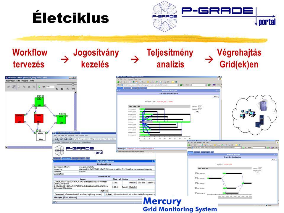 Életciklus Workflow Jogosítvány Teljesítmény Végrehajtás tervezés kezelés analízis Grid(ek)en   