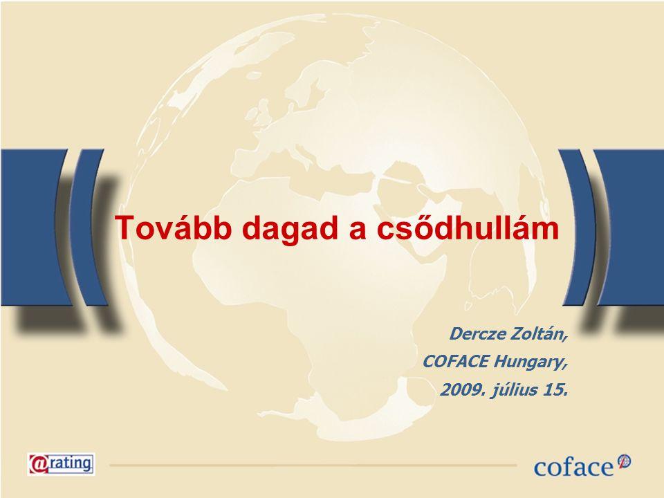 Tovább dagad a csődhullám Dercze Zoltán, COFACE Hungary, 2009. július 15.