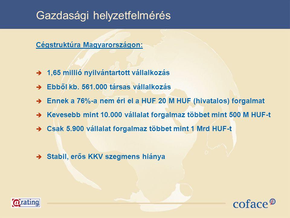 Gazdasági helyzetfelmérés Cégstruktúra Magyarországon:  1,65 millió nyilvántartott vállalkozás  Ebből kb. 561.000 társas vállalkozás  Ennek a 76%-a