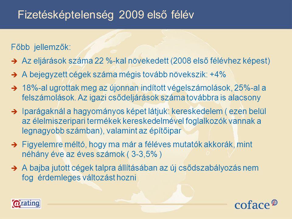 Fizetésképtelenség 2009 első félév Főbb jellemzők:  Az eljárások száma 22 %-kal növekedett (2008 első félévhez képest)  A bejegyzett cégek száma még