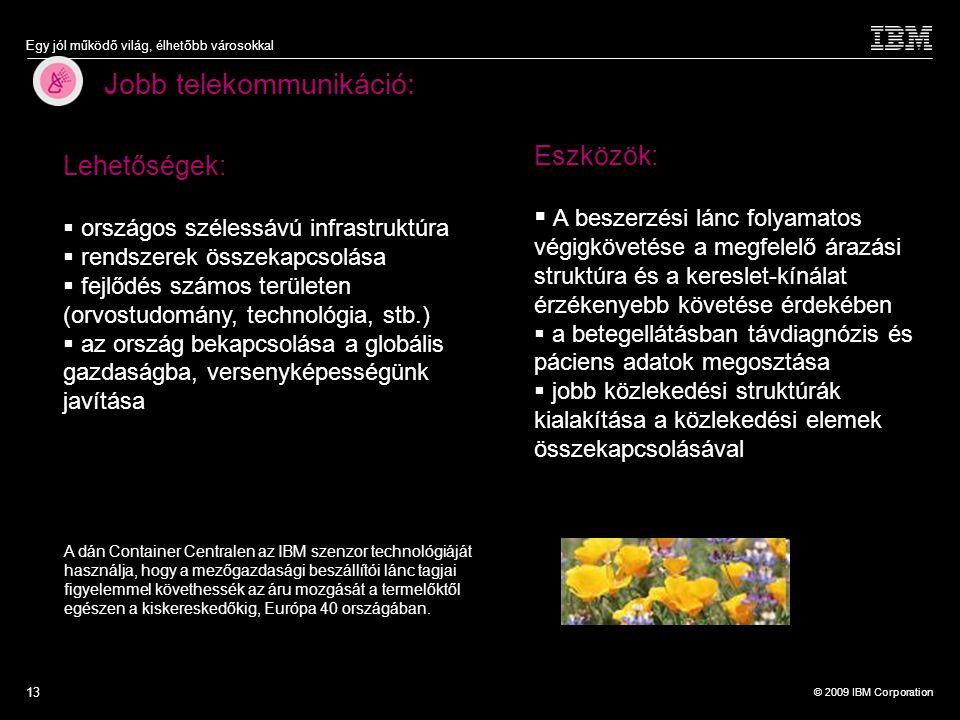 © 2009 IBM Corporation Egy jól működő világ, élhetőbb városokkal 13 Jobb telekommunikáció: A dán Container Centralen az IBM szenzor technológiáját has