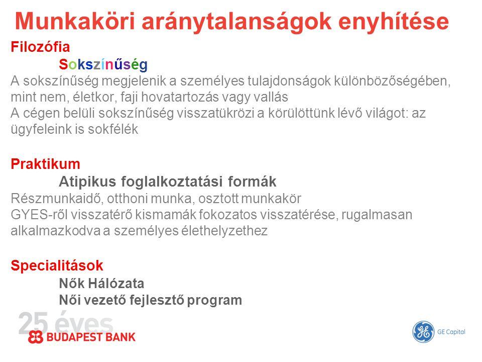 """Budapest Bank - Nők Hálózata A GE-nél dolgozó nők számára a hálózat a szakmai fejlődés és a karrier- fejlesztés lehetőségét kínálja, a GE számára pedig azt jelenti, hogy több nő kerül kulcsvezetői pozíciókba Karrier fejlesztés, """"én márka Dolgozó anyák és kismamák visszaintegrálása Zöld irodaJótékonyság Kitekintés"""