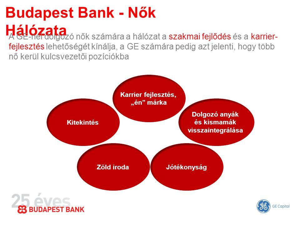 Budapest Bank - Nők Hálózata A GE-nél dolgozó nők számára a hálózat a szakmai fejlődés és a karrier- fejlesztés lehetőségét kínálja, a GE számára pedi
