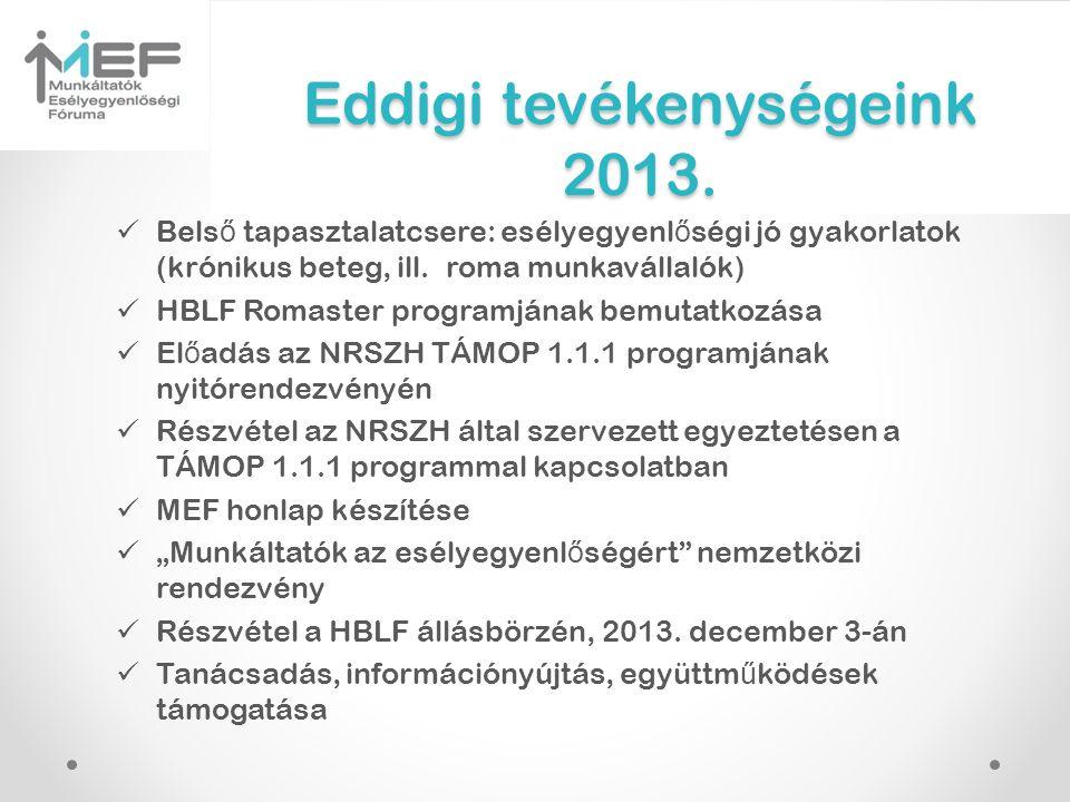 Eddigi tevékenységeink 2013.  Bels ő tapasztalatcsere: esélyegyenl ő ségi jó gyakorlatok (krónikus beteg, ill. roma munkavállalók)  HBLF Romaster pr