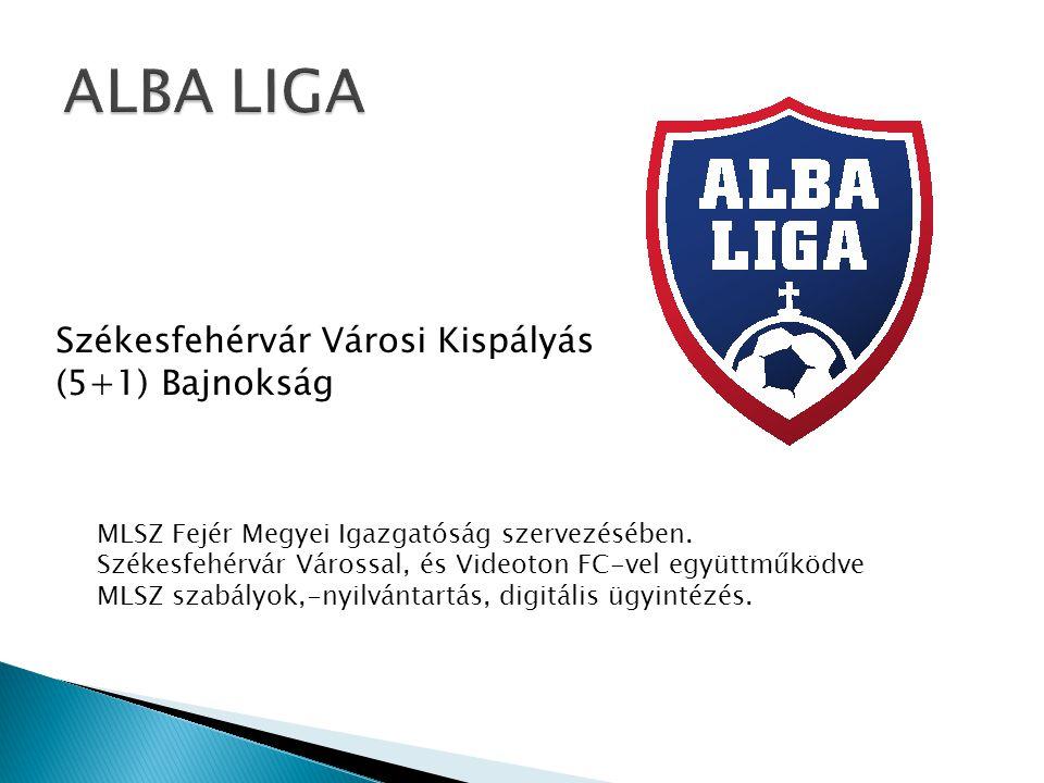 Székesfehérvár Városi Kispályás (5+1) Bajnokság MLSZ Fejér Megyei Igazgatóság szervezésében.
