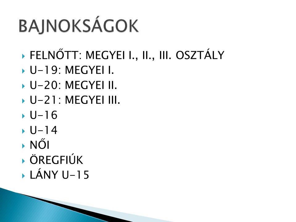  FELNŐTT: MEGYEI I., II., III. OSZTÁLY  U-19: MEGYEI I.