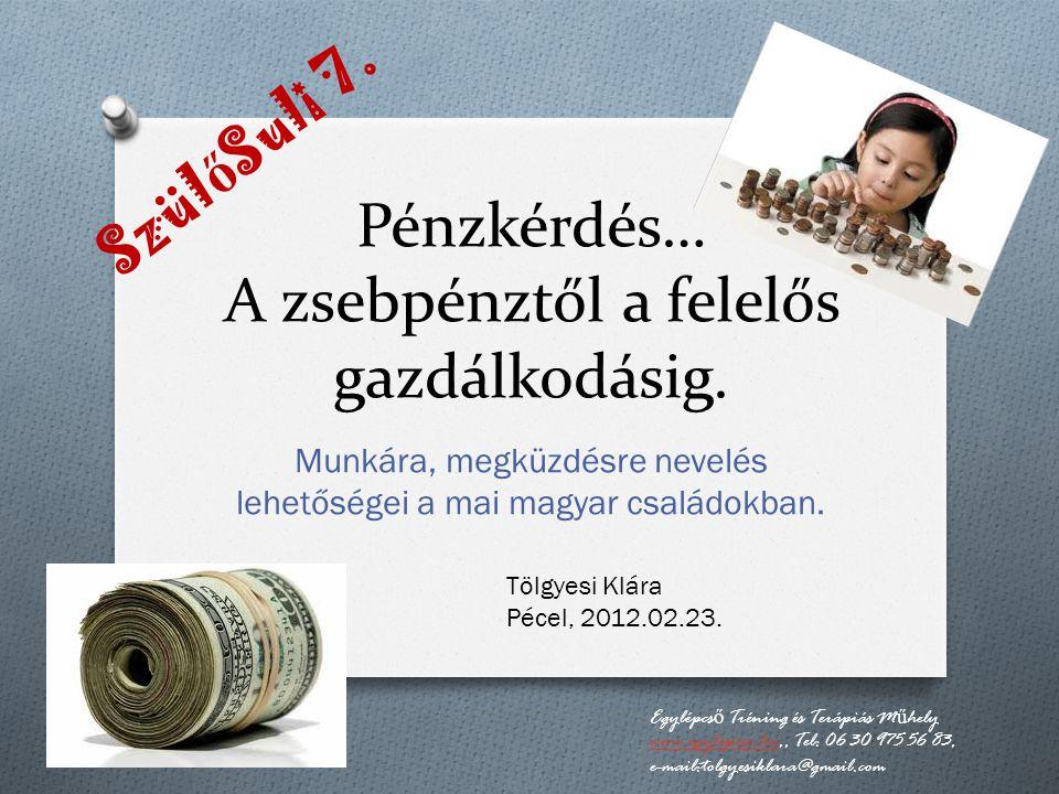 Pénzkérdés… A zsebpénztől a felelős gazdálkodásig.