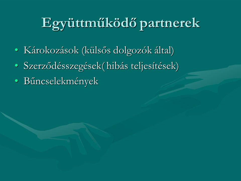 Együttműködő partnerek •Károkozások (külsős dolgozók által) •Szerződésszegések( hibás teljesítések) •Bűncselekmények