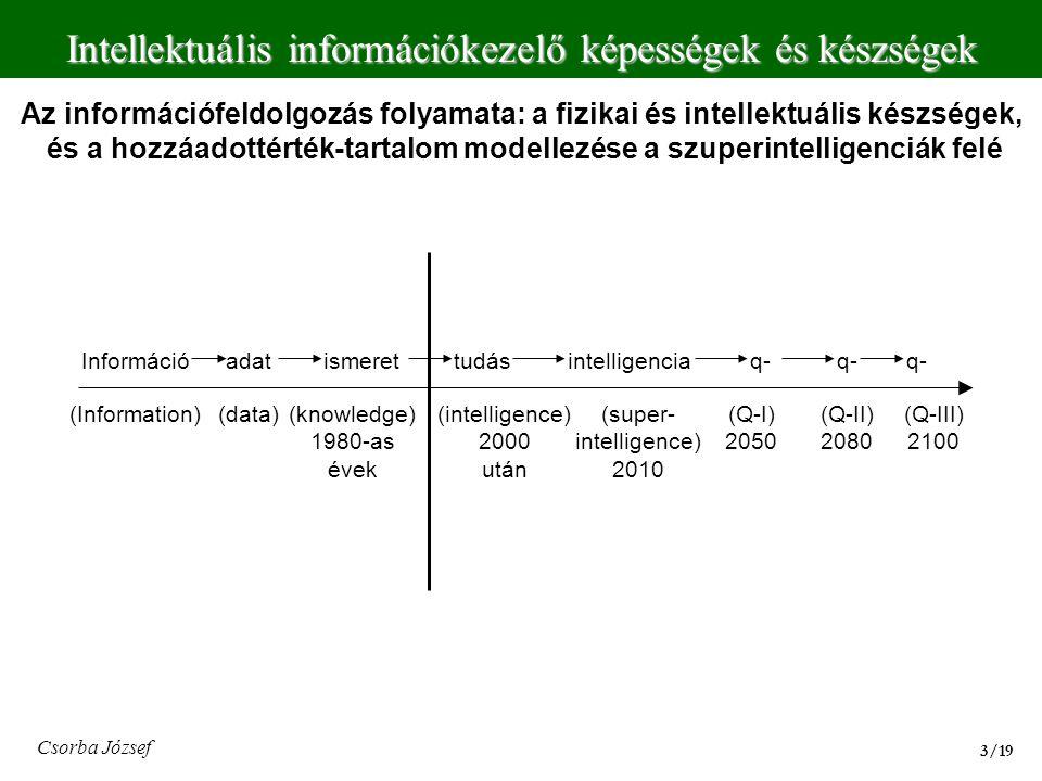 Intellektuális információkezelő képességek és készségek 3/193/19 Csorba József Az információfeldolgozás folyamata: a fizikai és intellektuális készség