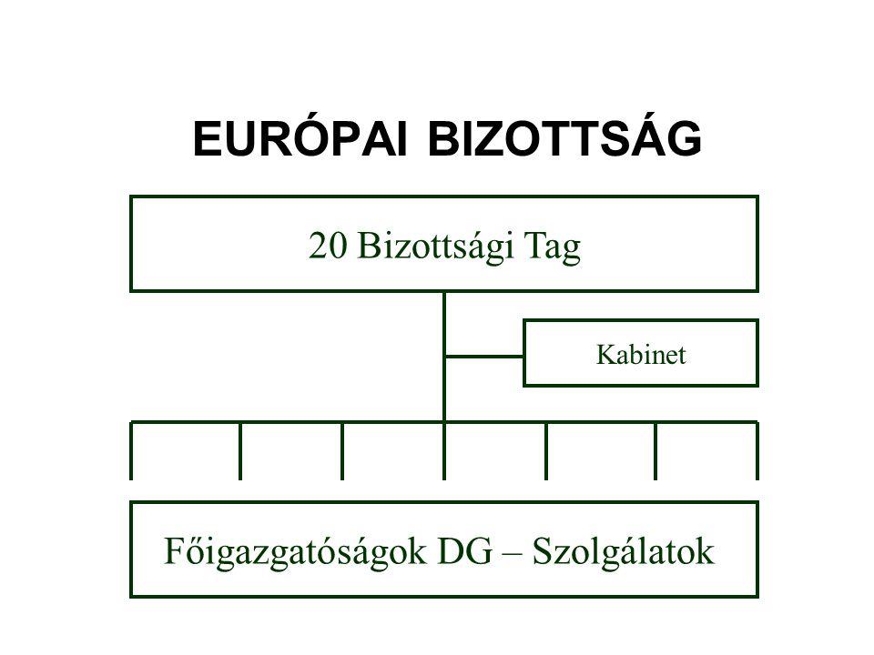 EURÓPAI BIZOTTSÁG 20 Bizottsági Tag Főigazgatóságok DG – Szolgálatok Kabinet
