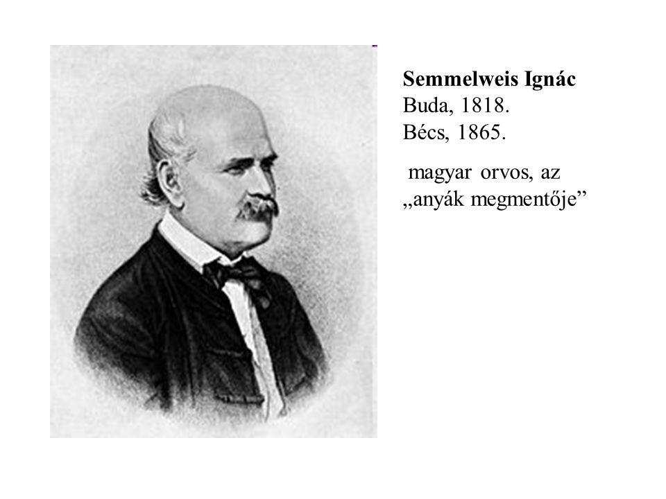 """Semmelweis Ignác Buda, 1818. Bécs, 1865. magyar orvos, az """"anyák megmentője"""""""