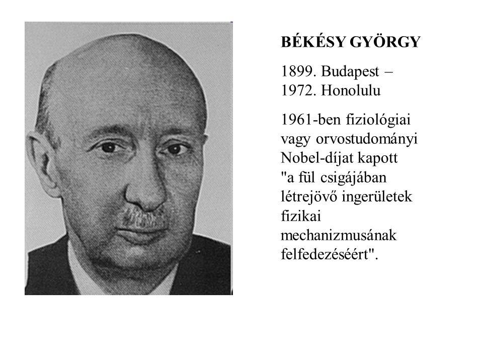 BÉKÉSY GYÖRGY 1899. Budapest – 1972. Honolulu 1961-ben fiziológiai vagy orvostudományi Nobel-díjat kapott