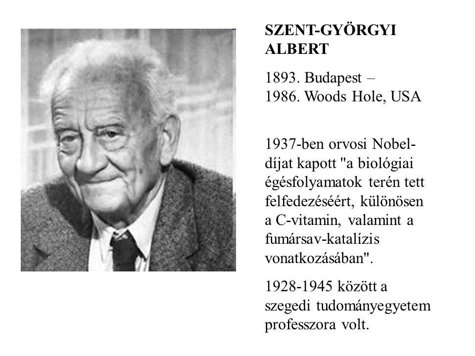 SZENT-GYÖRGYI ALBERT 1893. Budapest – 1986. Woods Hole, USA 1937-ben orvosi Nobel- díjat kapott
