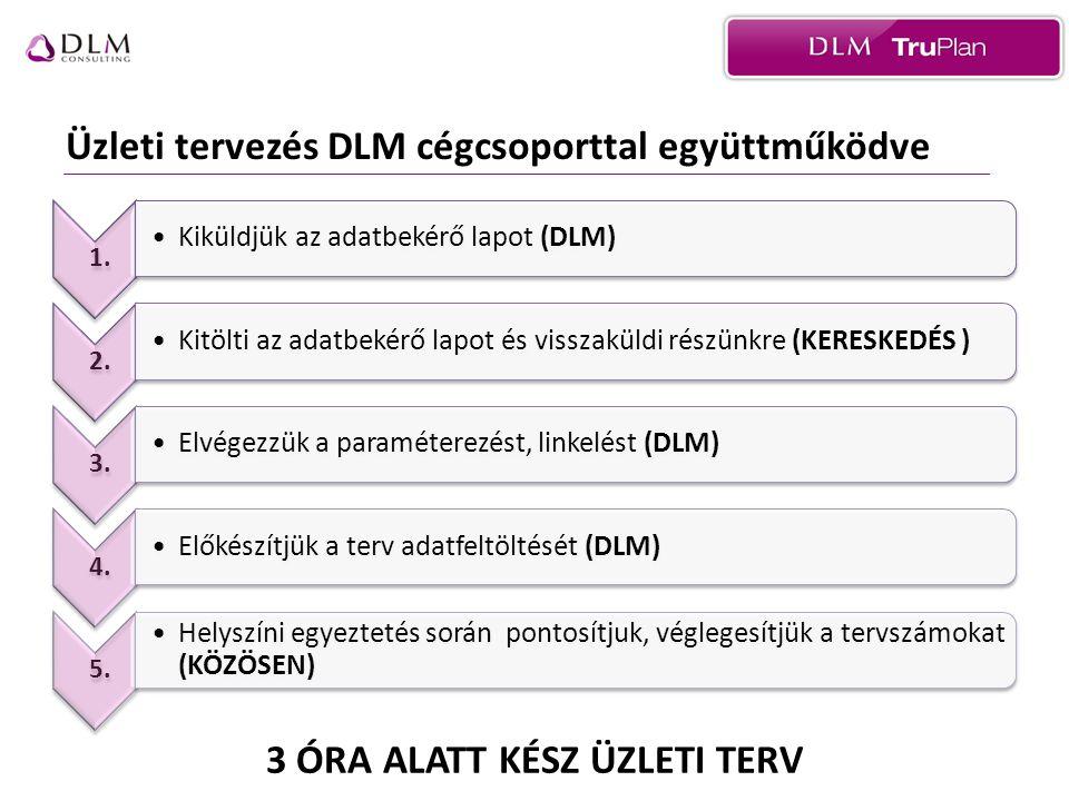 Üzleti tervezés DLM cégcsoporttal együttműködve 3 ÓRA ALATT KÉSZ ÜZLETI TERV 1.