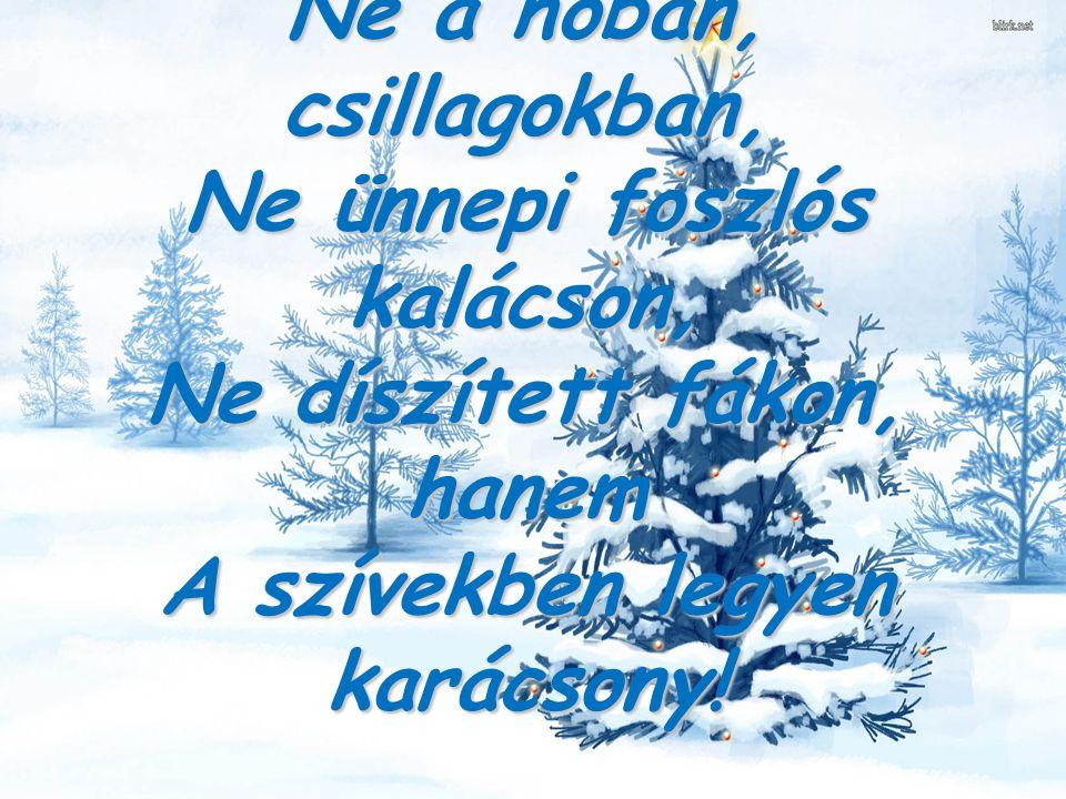 Napos Oldal a Sérült Emberekért Alapítvány gondozottai nevében szeretetben gazdag szép Karácsonyt és örömteli boldog Új Évet kívánunk.