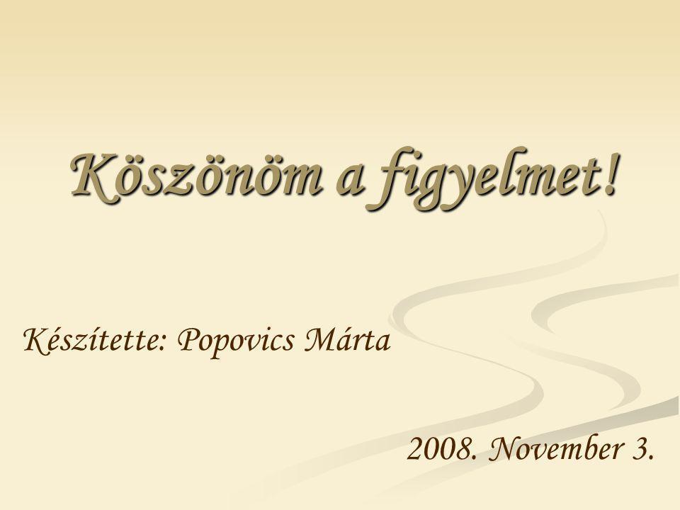 Köszönöm a figyelmet! Készítette: Popovics Márta 2008. November 3.