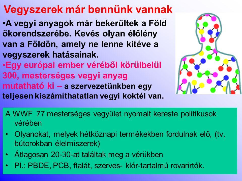A WWF 77 mesterséges vegyület nyomait kereste politikusok vérében •Olyanokat, melyek hétköznapi termékekben fordulnak elő, (tv, bútorokban élelmiszerek) •Átlagosan 20-30-at találtak meg a vérükben •Pl.: PBDE, PCB, ftalát, szerves- klór-tartalmú rovarirtók.