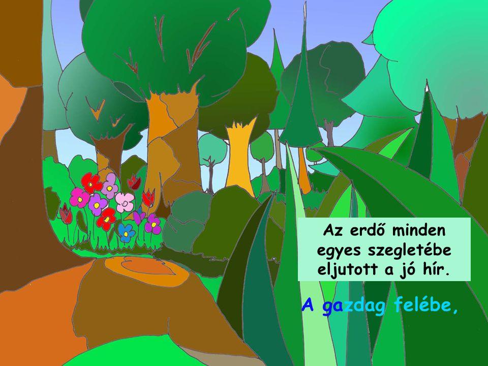 Az erdő minden egyes szegletébe eljutott a jó hír. A gazdag felébe,