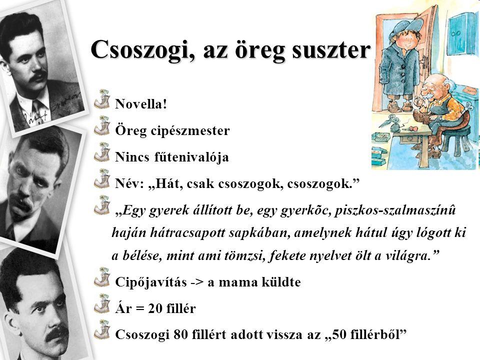 """Csoszogi, az öreg suszter Novella! Öreg cipészmester Nincs fűtenivalója Név: """"Hát, csak csoszogok, csoszogok."""" """"Egy gyerek állított be, egy gyerkõc, p"""