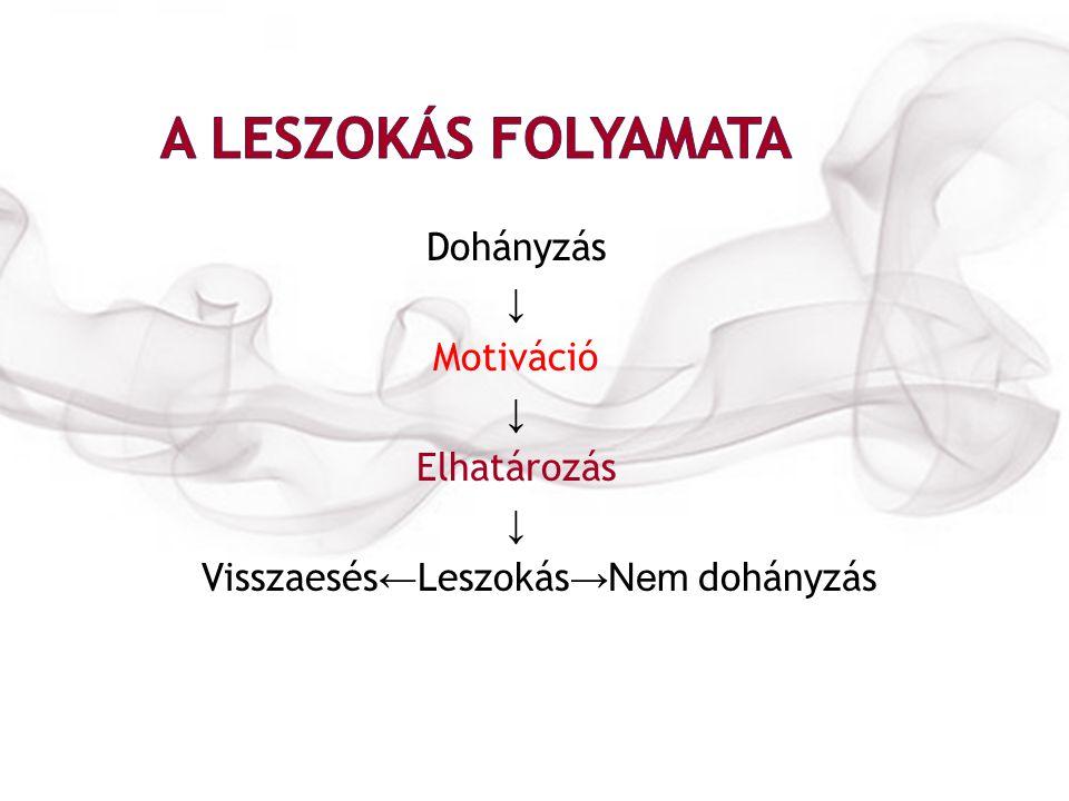 Dohányzás ↓ Motiváció ↓ Elhatározás ↓ Visszaesés ← Leszokás → Nem dohányzás
