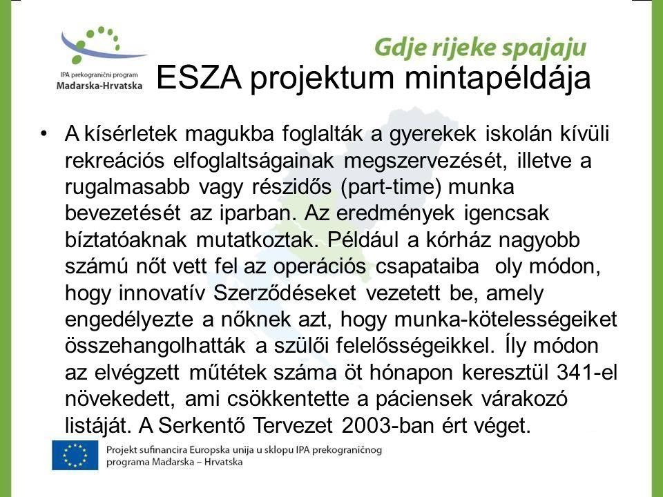 ESZA projektum mintapéldája •A kísérletek magukba foglalták a gyerekek iskolán kívüli rekreációs elfoglaltságainak megszervezését, illetve a rugalmasa
