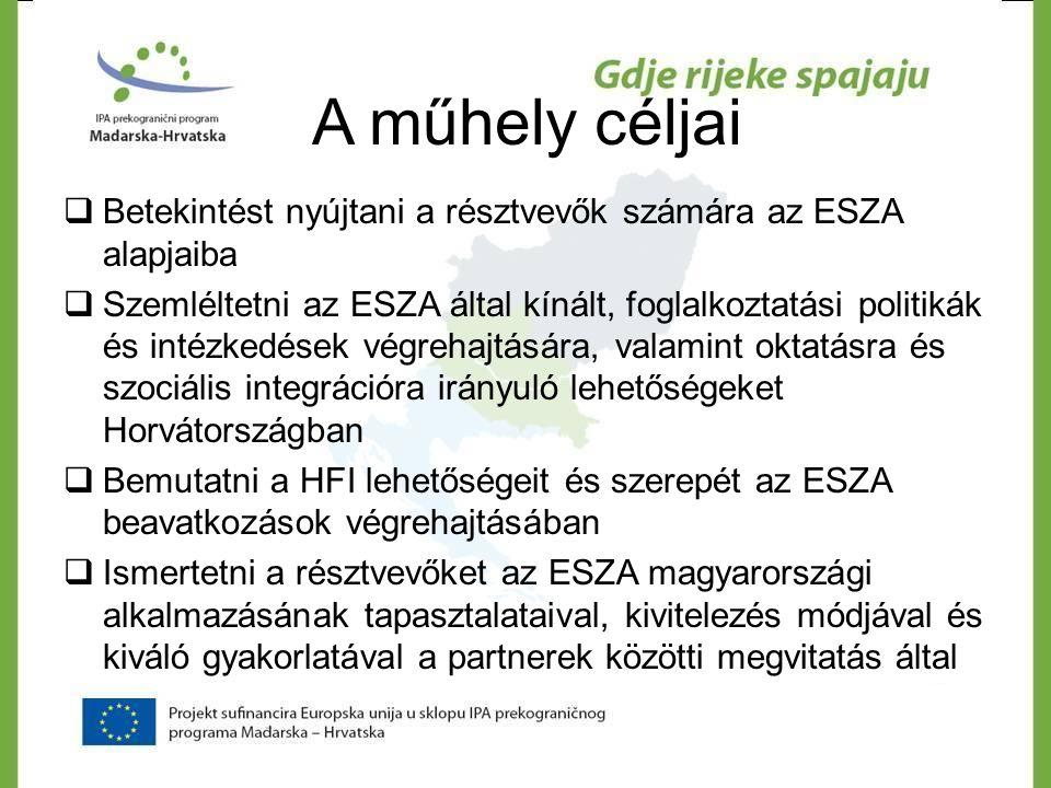 A műhely céljai  Betekintést nyújtani a résztvevők számára az ESZA alapjaiba  Szemléltetni az ESZA által kínált, foglalkoztatási politikák és intézk