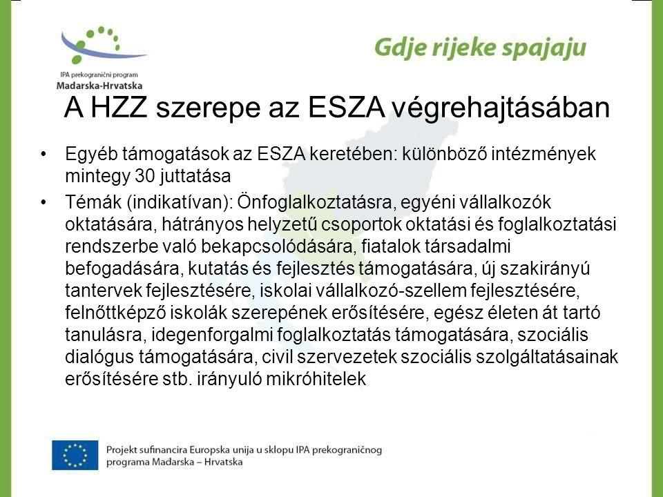 A HZZ szerepe az ESZA végrehajtásában •Egyéb támogatások az ESZA keretében: különböző intézmények mintegy 30 juttatása •Témák (indikatívan): Önfoglalk