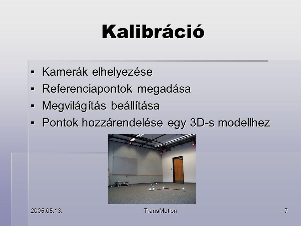 2005.05.13.TransMotion8 Megvalósítás 1.A kamerák képeinek feldolgozása 2.3D-s koordináták visszafejtése 3.Az adatok továbbítása a kliens felé 4.A jelenet megjelenítése
