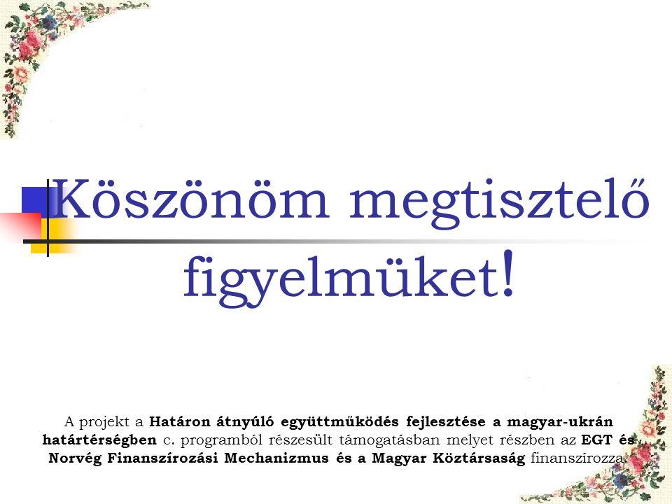 Köszönöm megtisztelő figyelmüket ! A projekt a Határon átnyúló együttműködés fejlesztése a magyar-ukrán határtérségben c. programból részesült támogat