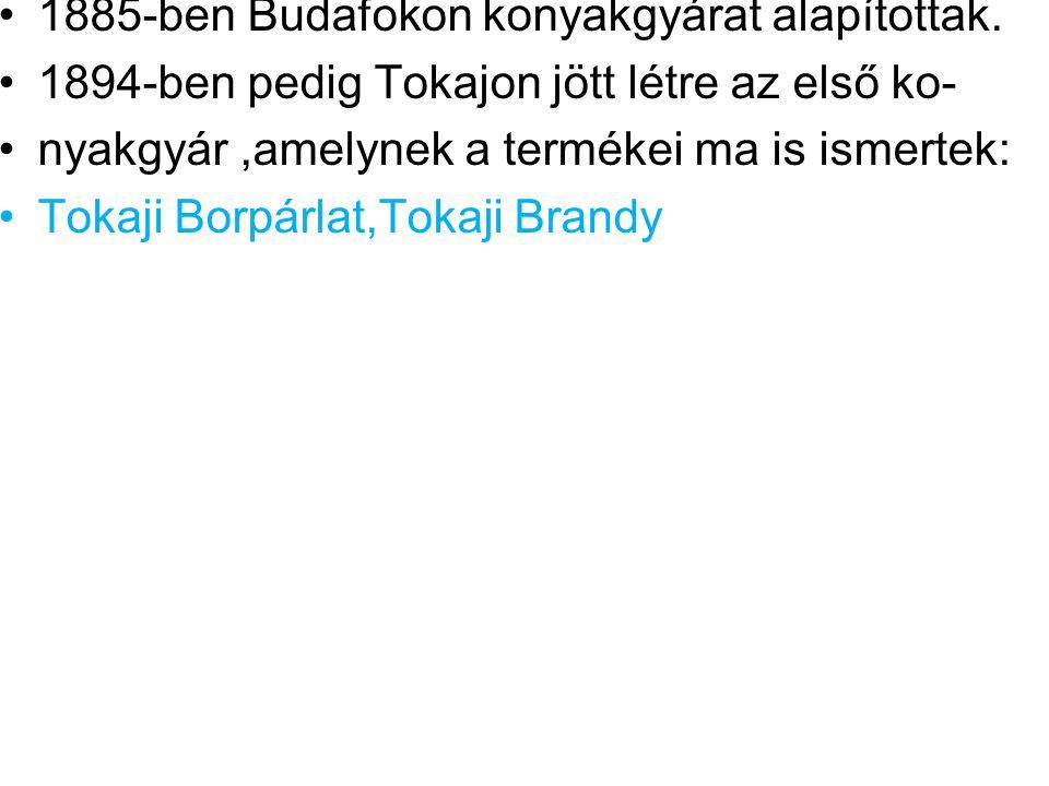 •1885-ben Budafokon konyakgyárat alapítottak. •1894-ben pedig Tokajon jött létre az első ko- •nyakgyár,amelynek a termékei ma is ismertek: •Tokaji Bor
